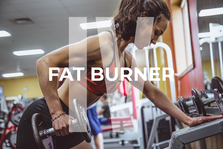 Fat Burner v4